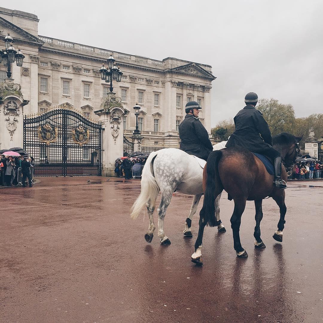 카메라 급하게 들이미느라 옹동이밖에.. #유럽#Europe  #영국#Uk  #런던 #London  #여행스타그램 by travelwithmeeeee