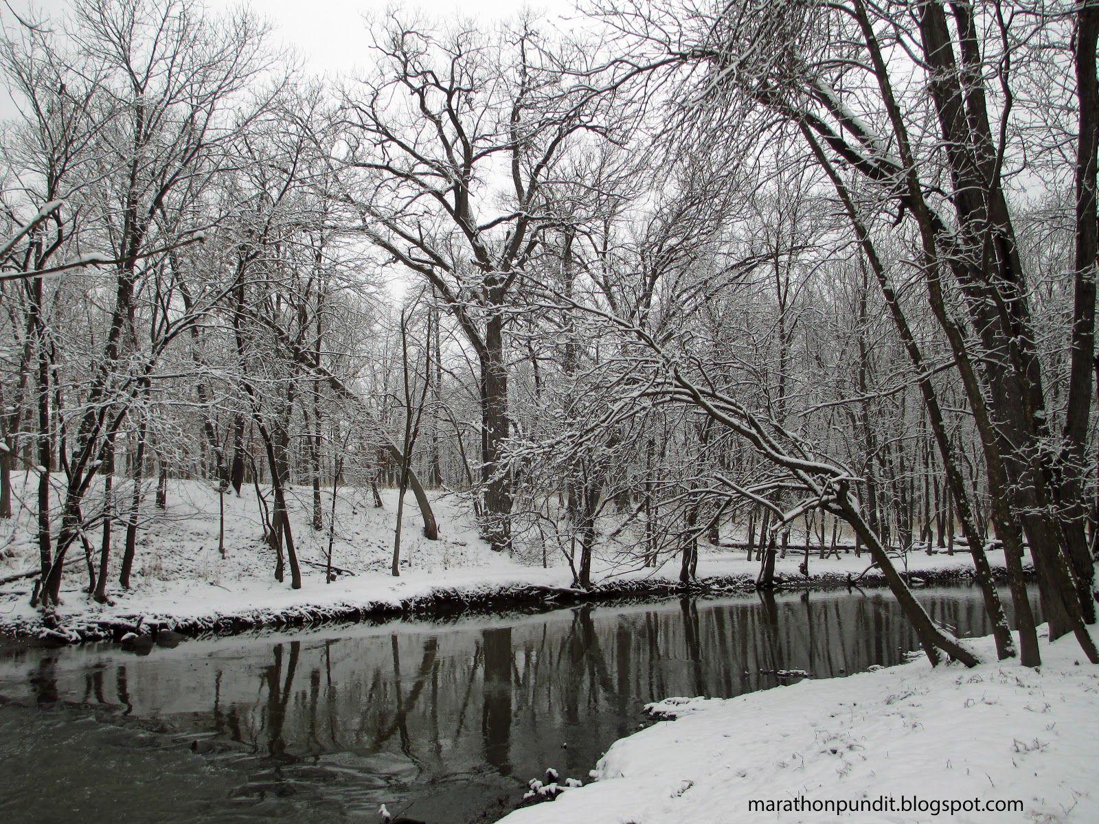 Morton Grove's St. Paul Woods after snowfall #mortongrove