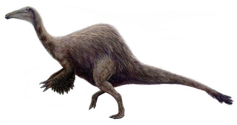 14 Unusual Prehistoric Creatures | Paleontology World #prehistoriccreatures 14 U...  #Creatures #Paleontology #prehistoric #prehistoriccreatures #Unusual #World #prehistoriccreatures