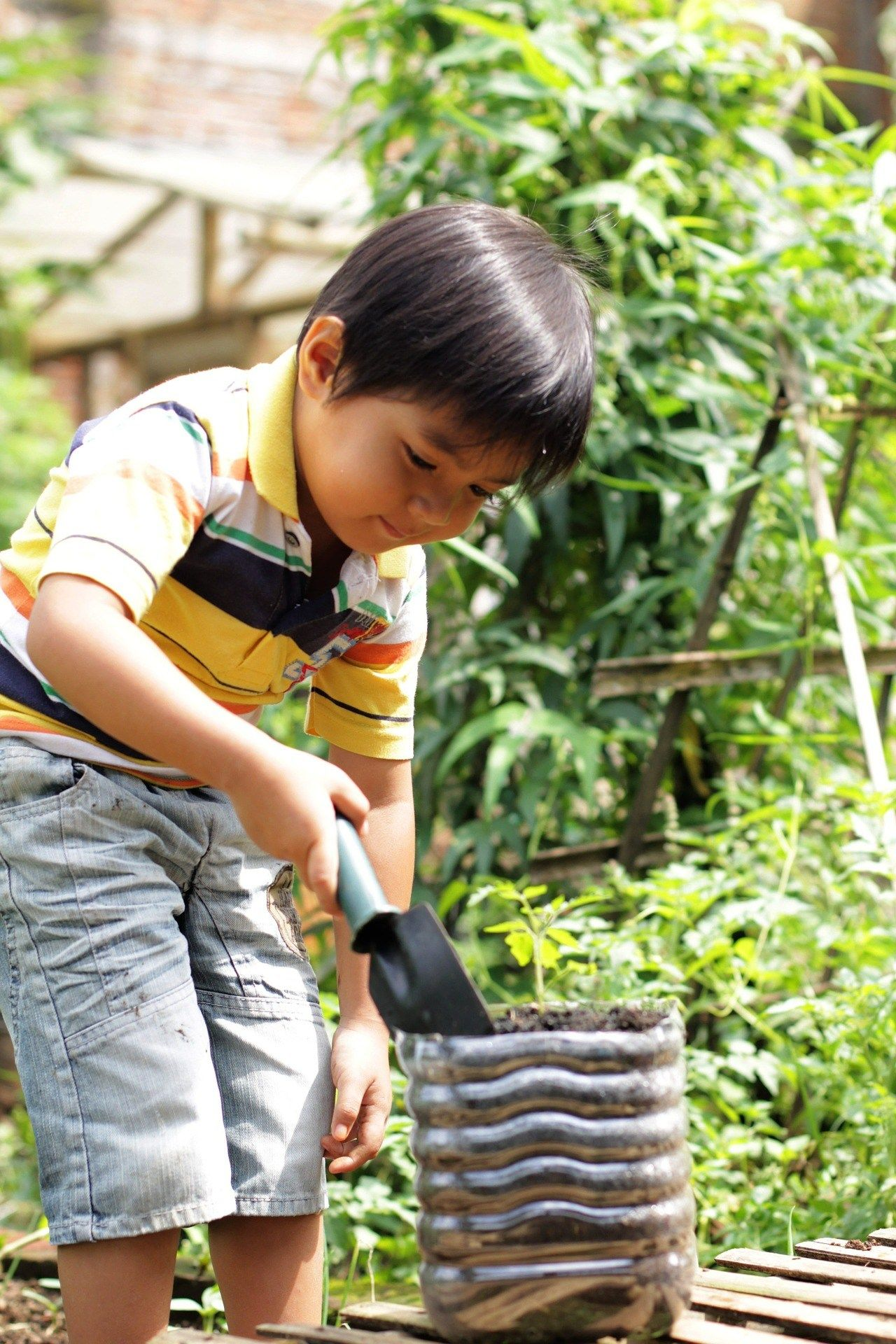 Top Tips For Creating The Perfect Small Family Yard