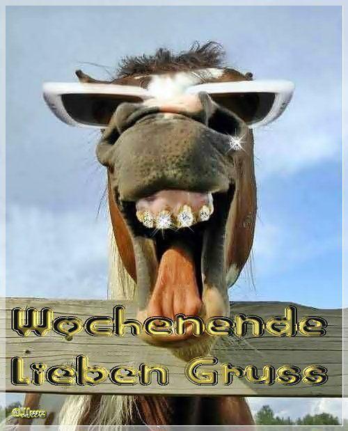 Pin von nina behler auf Humor/Satire | Wochenende lustig