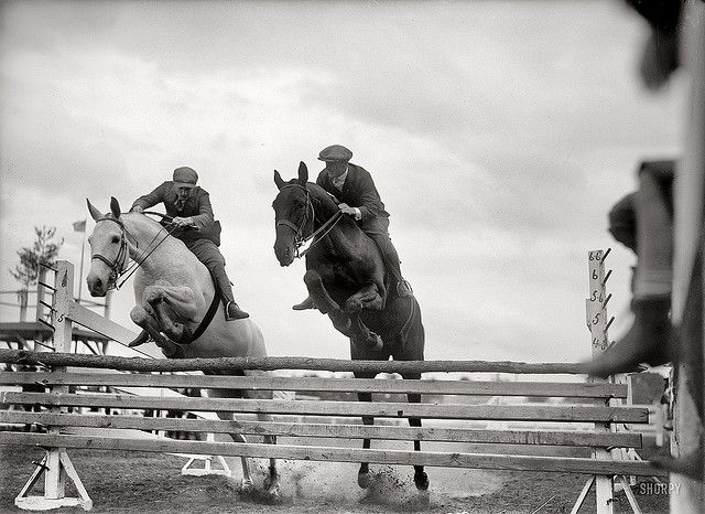 Pairs jumping, horse show, 1919