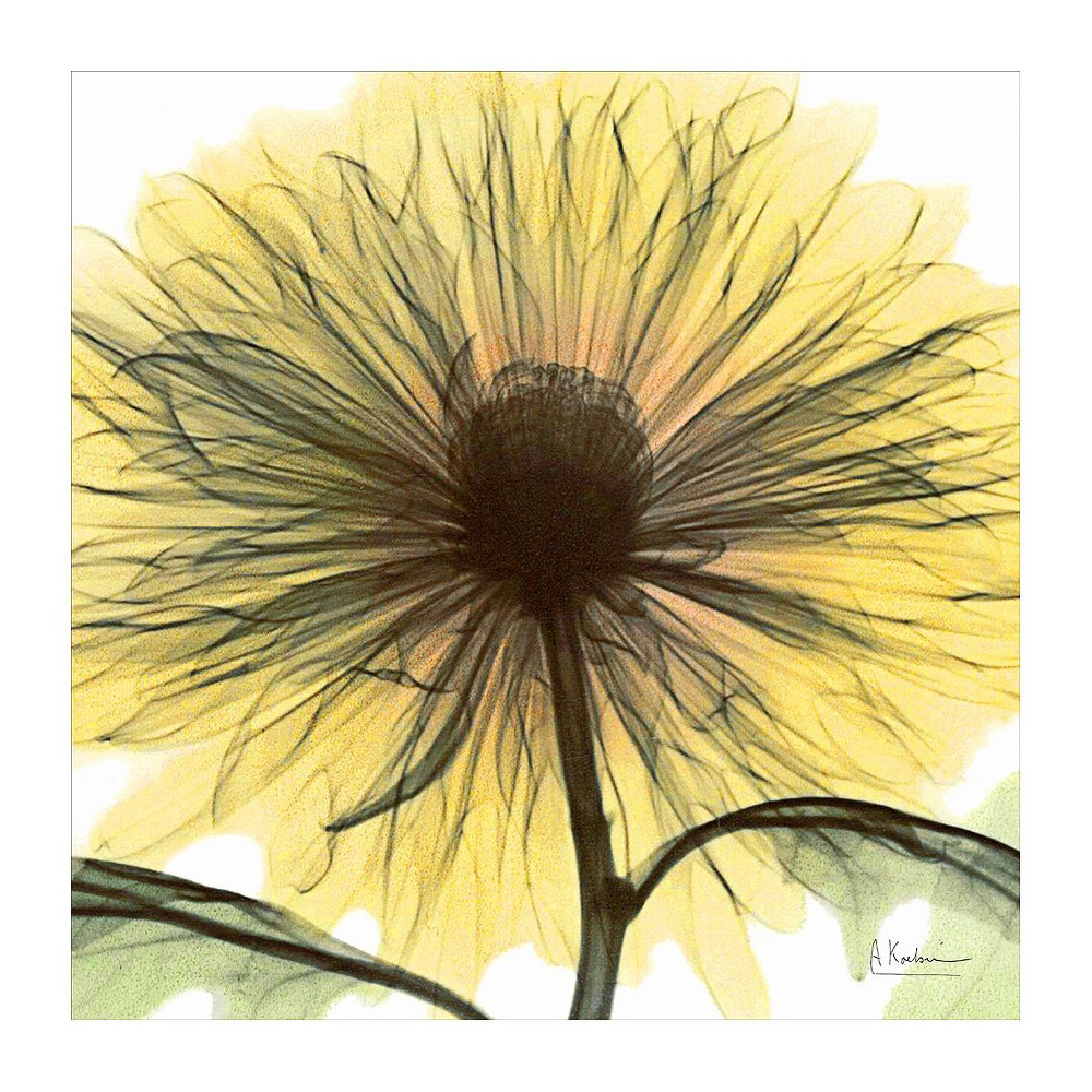 Art.com - Dream in Yellow Art Print #ad