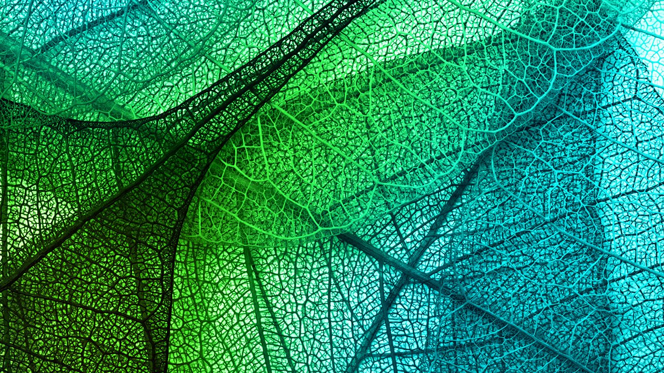 vm02 leaves art green blue pattern wallpaper