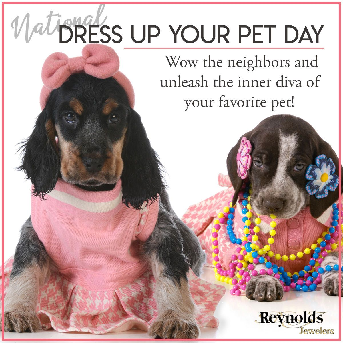 It's National Dress Up Your Pet Day! Share your favorite