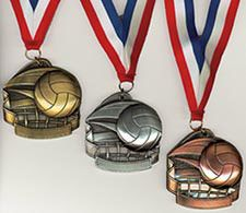 Deluxe Volleyball Medals | Awards/Prizes/Gifts | Volleyball