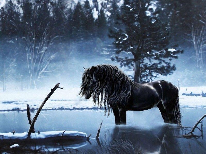 Les Fonds D Ecran Un Cheval Noir Dans L Eau Peinture D Animal Art A Theme Cheval Fond Ecran Hiver
