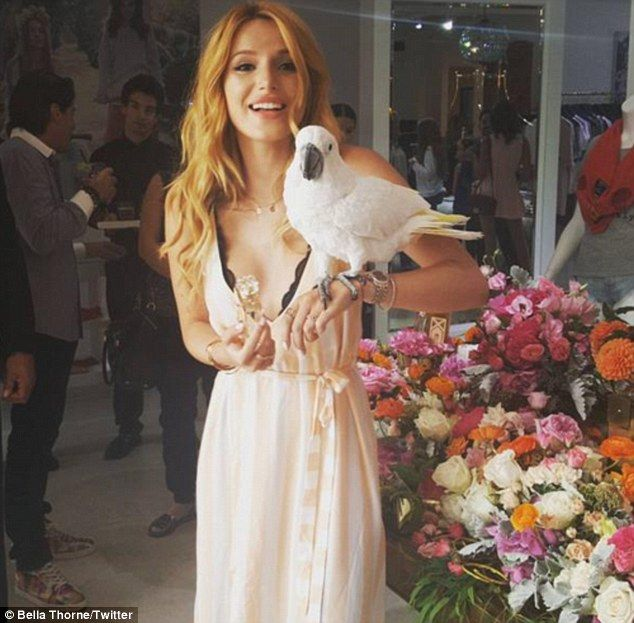 Happy days: Bella posed with the fragrance bottle and the bird in a photo she uploaded to ...