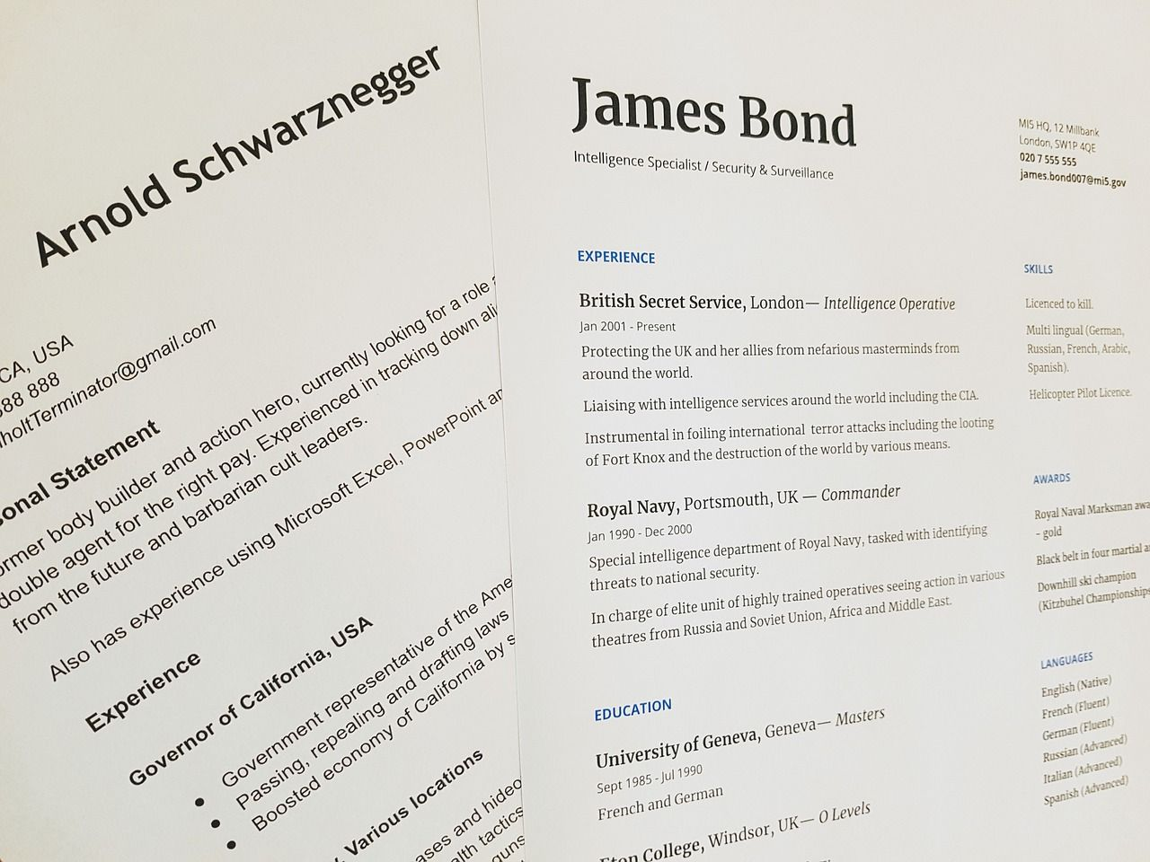 Resume Capitalization Rules and Guidelines Resume