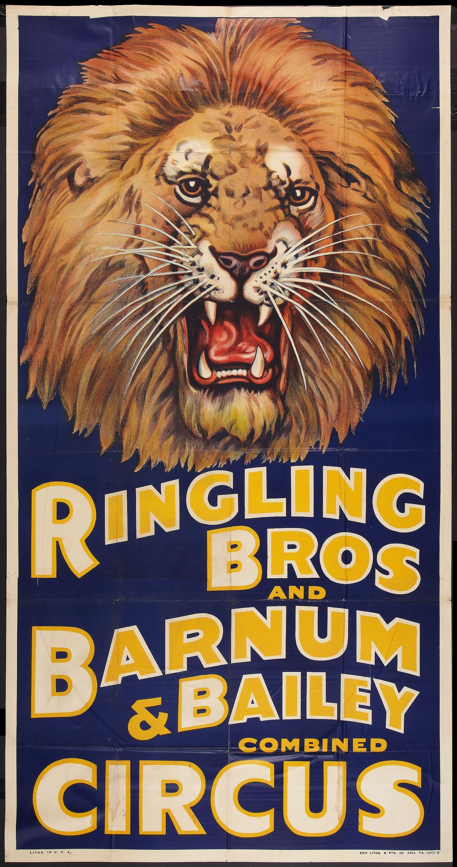 Ringling Bros Circus Lion Poster Large 24inx36in