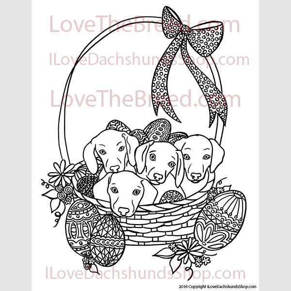 Dachshund Easter Coloring Page INSTANT DOWNLOAD | Таксюша | Pinterest