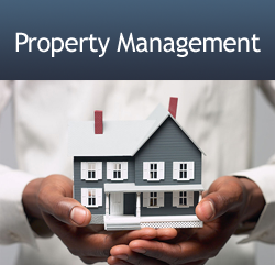Xl Property Management Llc Is Your One Stop Firm For Every