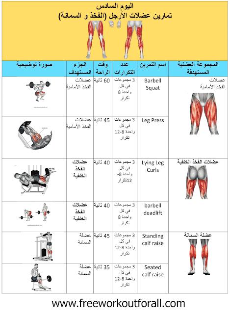 جدول تمارين كمال اجسام 5 ايام Workout Routine For Men Workout Schedule Gym Schedule
