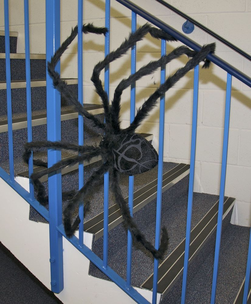 details about huge 50 giant furry spider tarantula black bendable halloween decoration prop