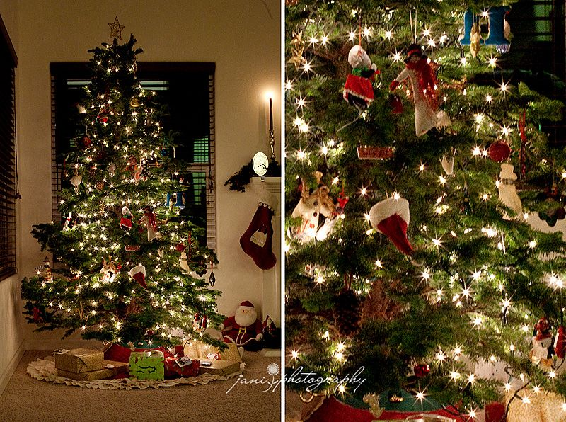 Tips for photographing the christmas tree.