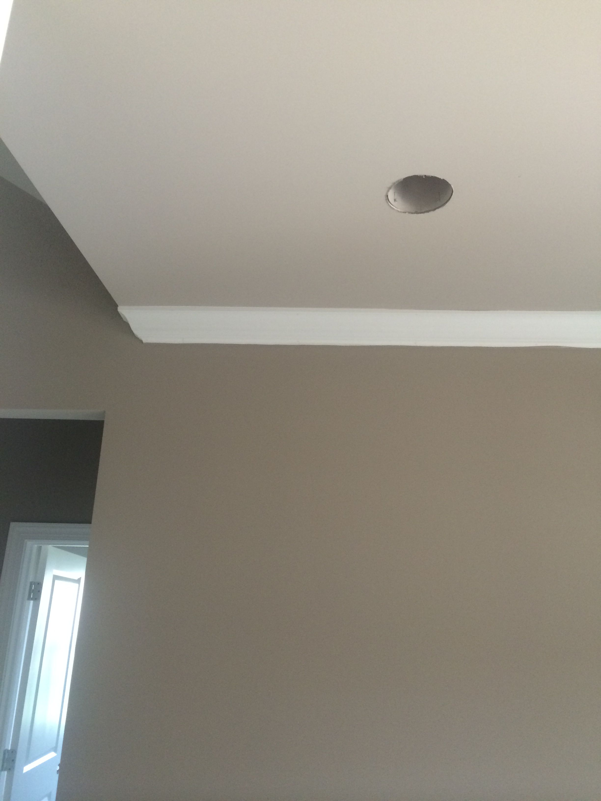 Sherwin Williams Mega Greige with Sherwin Williams anew gray ceiling