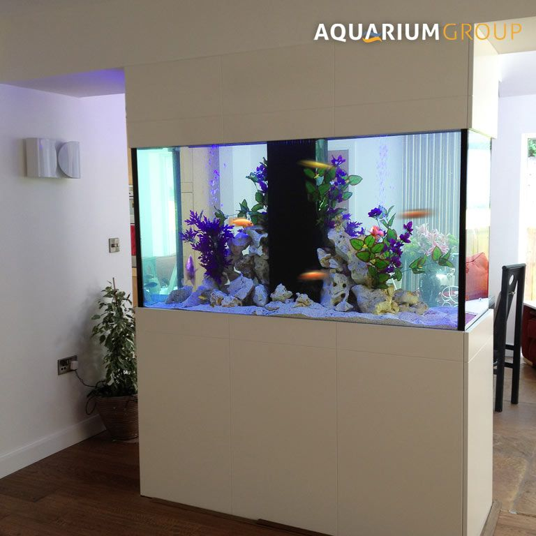 Freestanding room divider fish tank defining lounge dining for Fish tank divider
