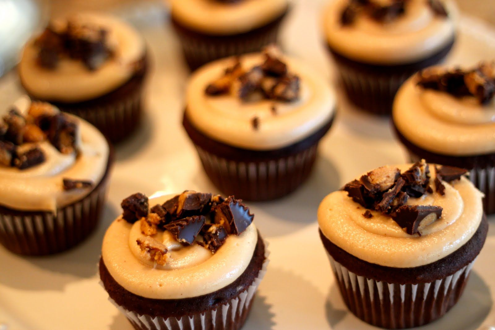 chocolate peanut butter cupcakes background 1 hd wallpapers | kid