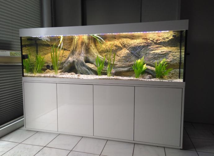 aquarium komplett sonderangebote sie m chten eine. Black Bedroom Furniture Sets. Home Design Ideas