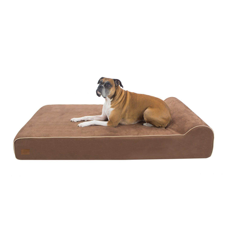 pet collars dog pin clothes beds toys xxl large bed cat extra