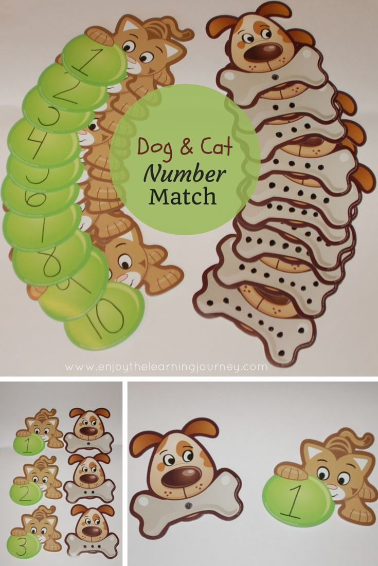 Dog and Cat Number Match Game for Preschoolers | Dogs and Cats Theme ...