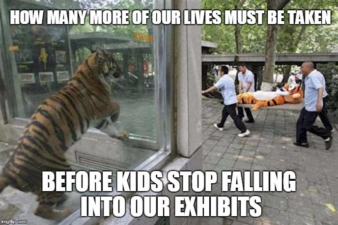 Funny Zoo Memes : Harambe meme trending pictures pinterest