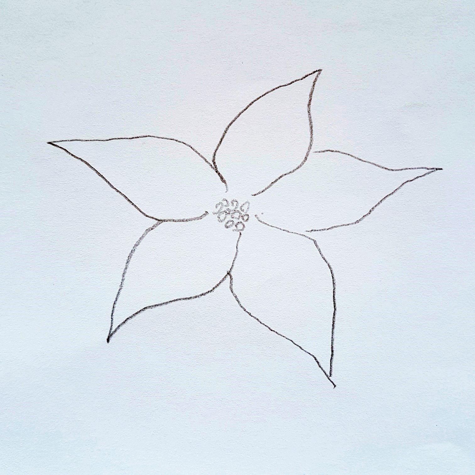 Anleitung zum zeichnen eines Weihnachtsstern