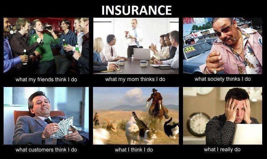 Cute Insurance Joke For Insurance Agents Real Estate Humor Real