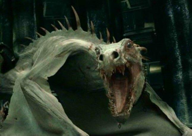 a Ukranian Ironbelly dragon guards the LeStrange vault ...
