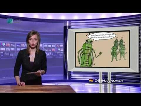 Medienlüge: Wer sind denn nun die Deutschen?! | 05. Mai 2014 | kla.tv