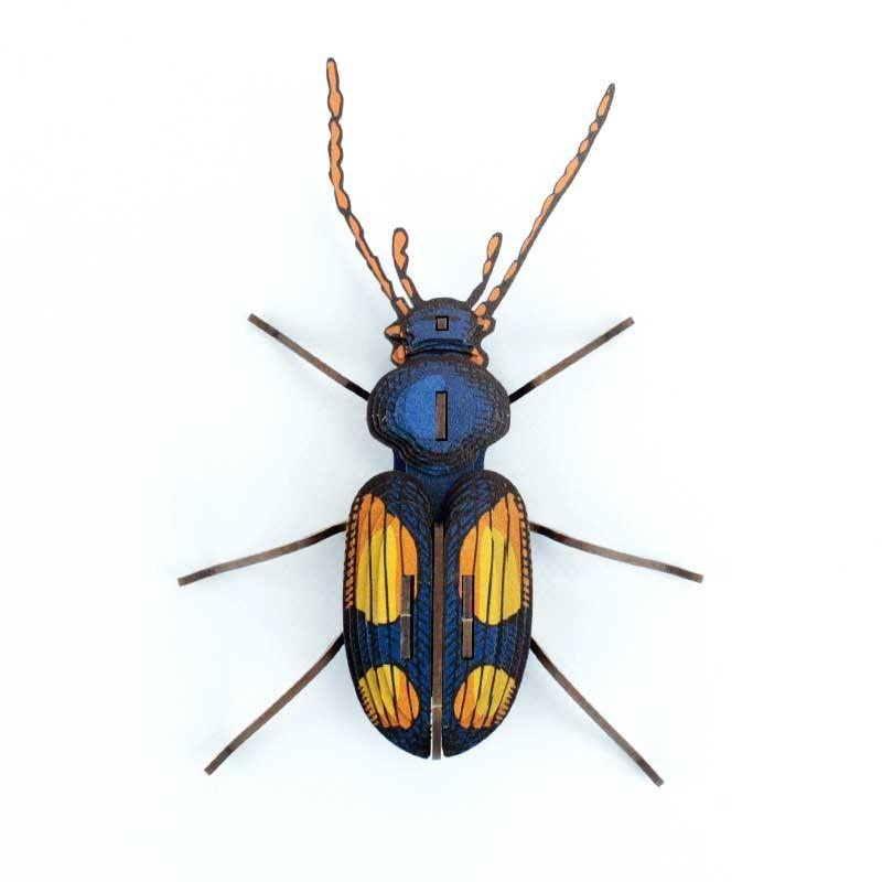 Insecte - Chatouillus (avec images)   Insectes, Modèles en ...
