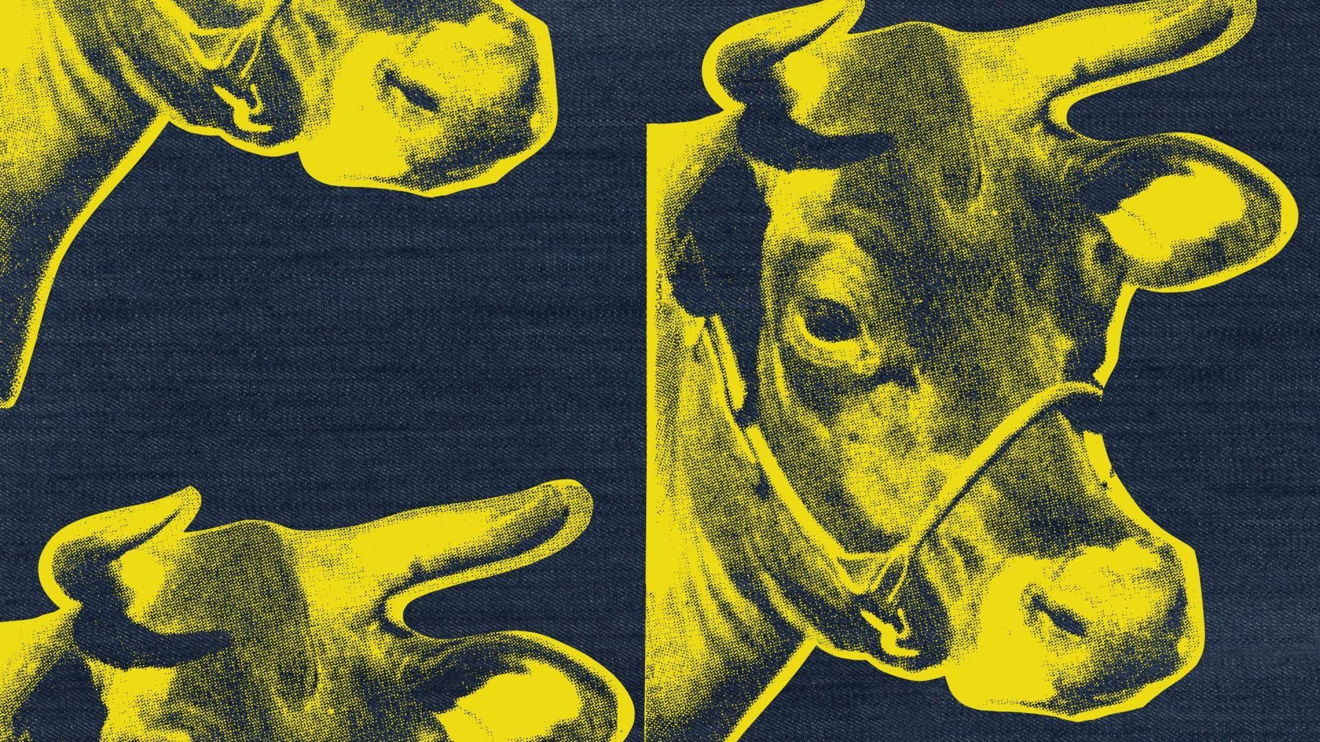 Andy Warhol Cow Wallpaper DFILES 681×498 Warhol Cow