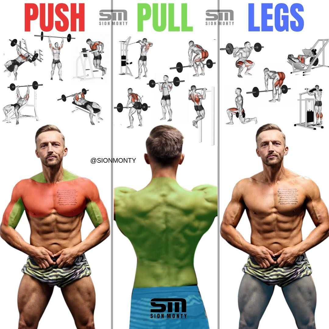 Push Pull Legs Split 3 6 Day Weight Training Workout