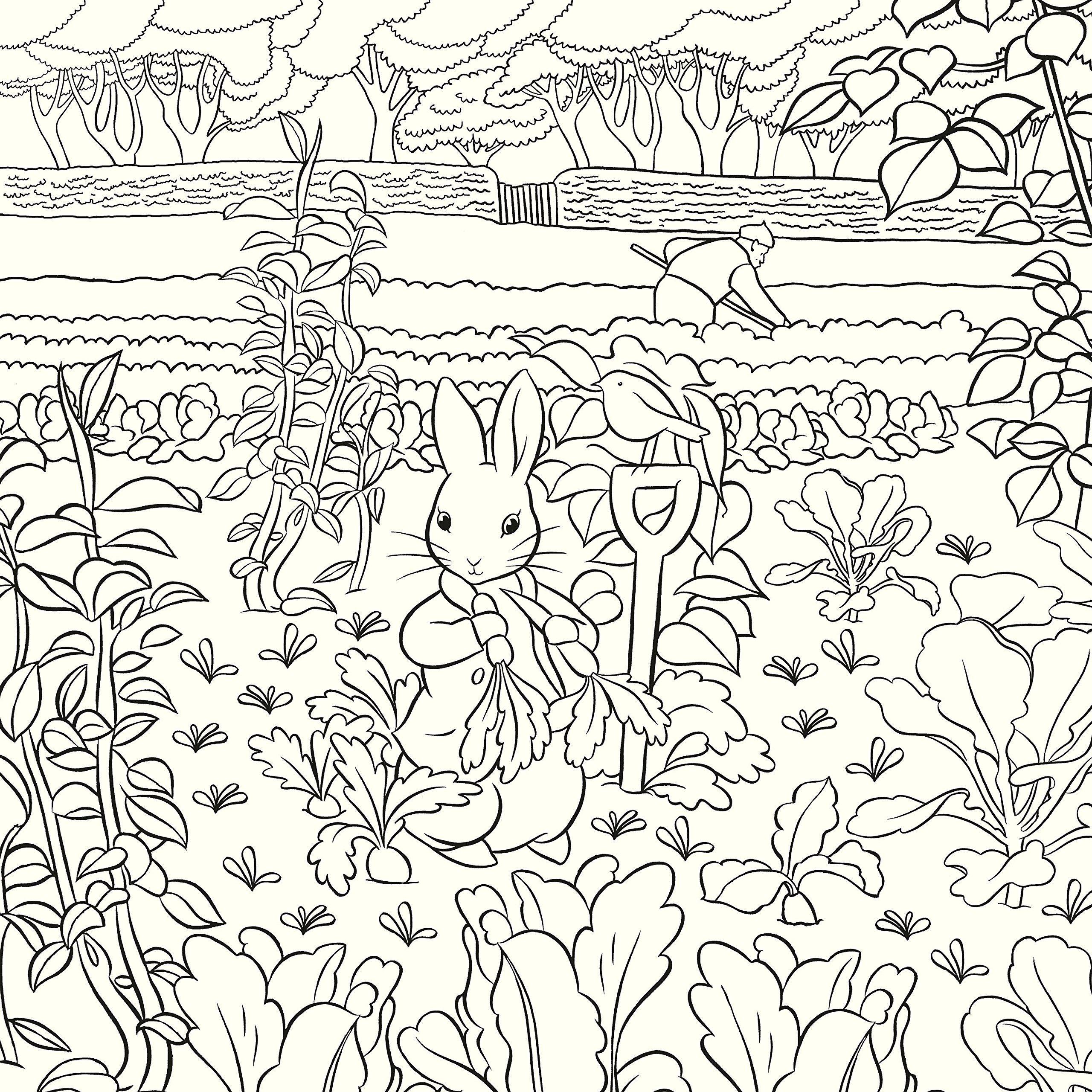 Beatrix Potter Colouring Book, The: Warne: Amazon.com.au: Books ...