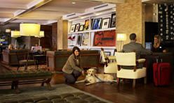 The Hutton Hotel Nashville Tn Pet Friendly Hotels Pet Friendly Motels Nashville Hotels