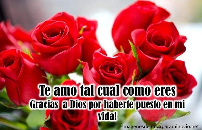 Imagenes Con Rosas Romanticas Para La Novia Amor