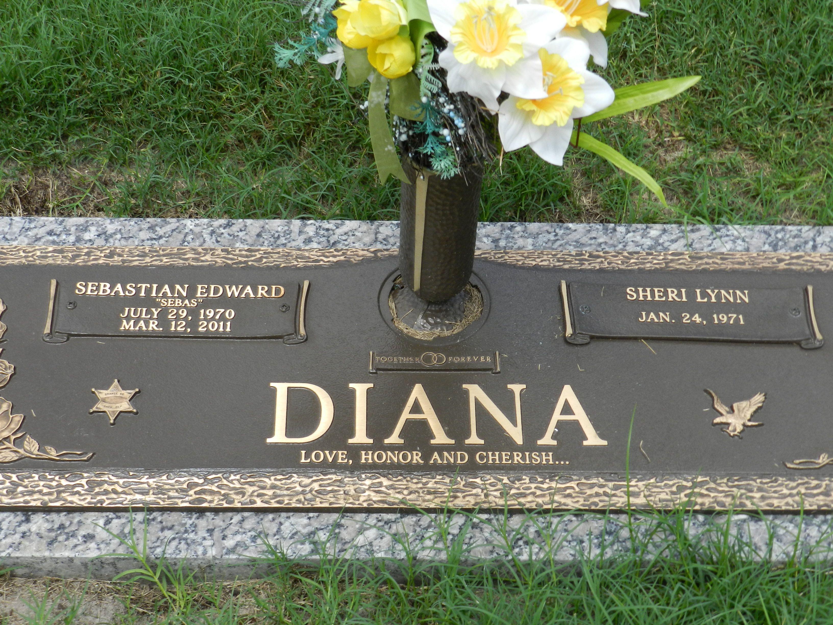 Christmas Princess diana, Lady diana, Diana memorial