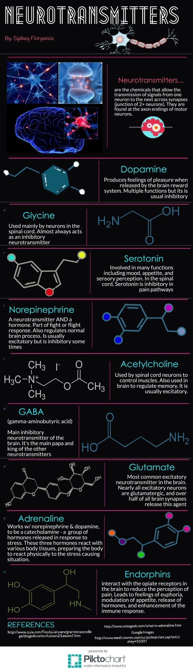 Infographic on neurotransmitters in the brain. Neuroscience. Brain. Infographics. Science. Neurons.