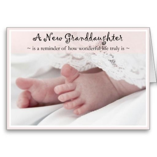 Diva S Congrats On Your New Granddaughter Card Zazzle Com Grandson Quotes Granddaughter Quotes Grandparents Quotes