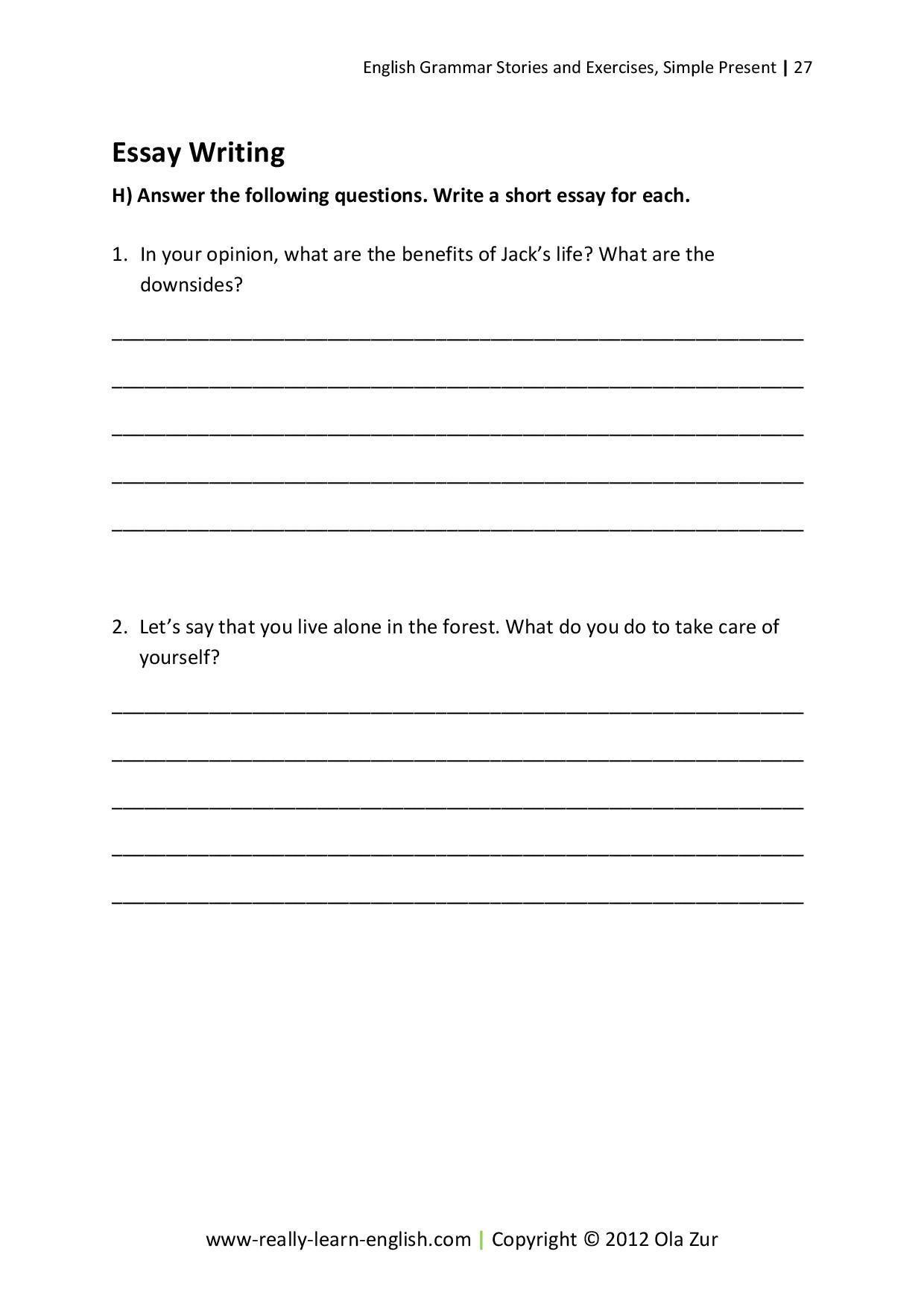 Essay writing format apa example pdf format   Essay егэ