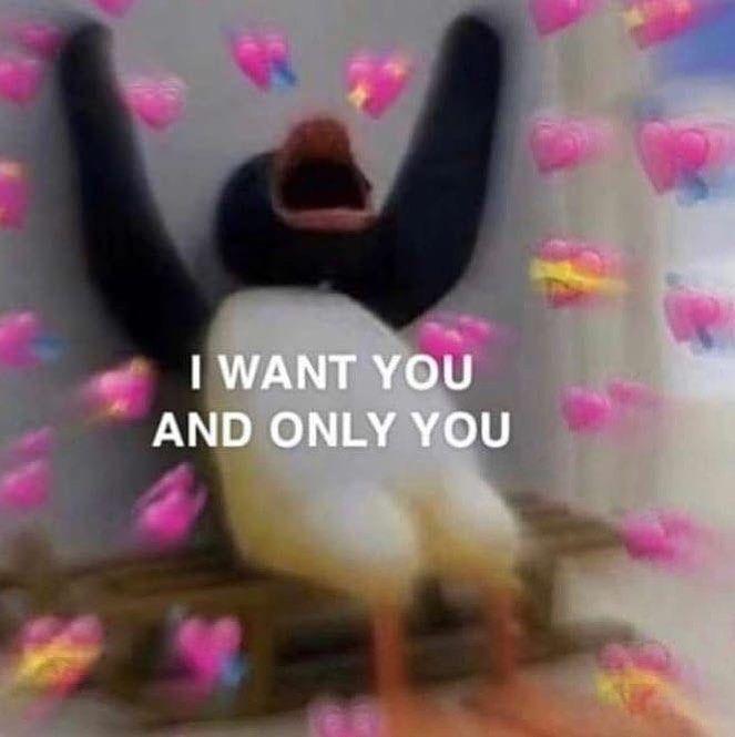 Strip Search Jungkook 18 Cute Love Memes Cute Memes Love Memes
