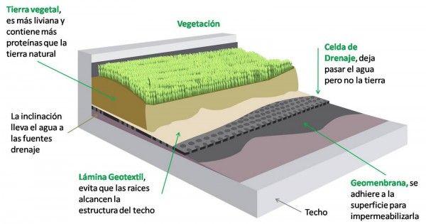 Techo Verde Techo Verde Techos Verdes Fachada Verde Y