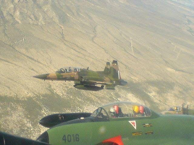 F-5 and T-33 FAM | Fuerza aérea mexicana | Pinterest | Avión, Fuerza ...