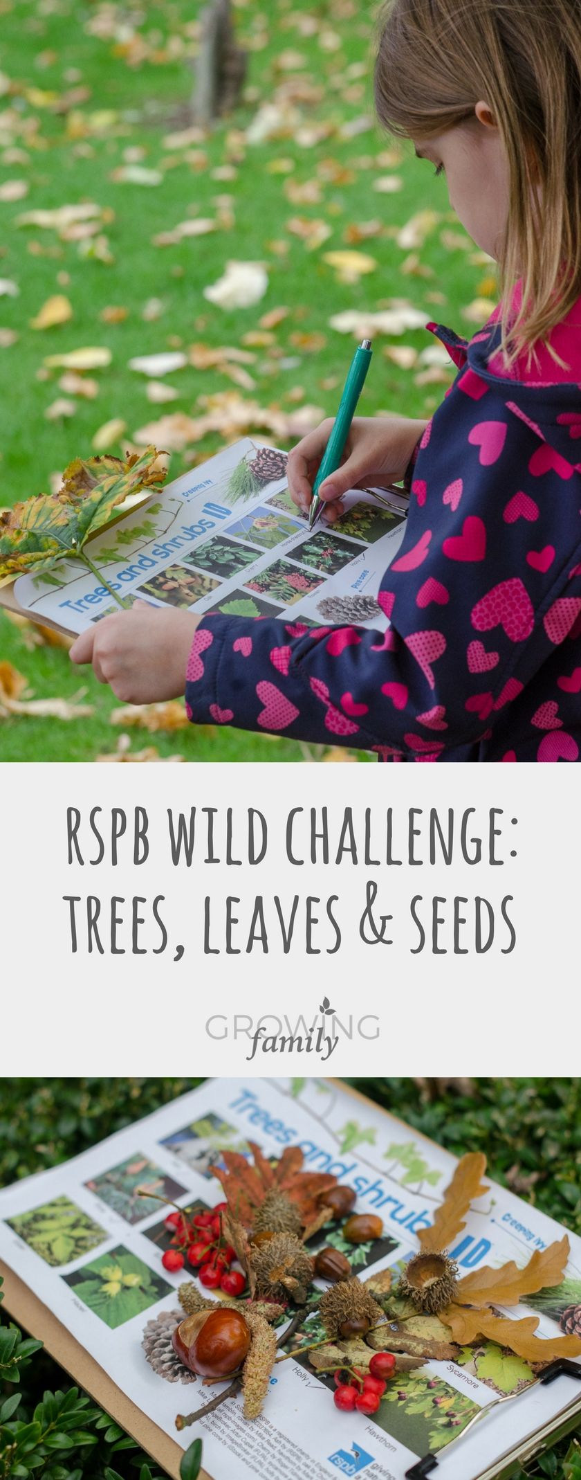 Ways to Explore Fall Nature with Kids In Hindi Ways to Explore Fall Nature with Kids In Hindi new photo