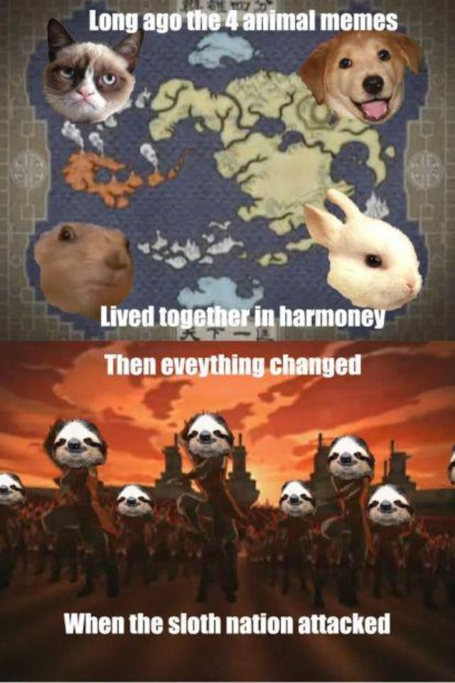 Pin By Brianne Pollard On Laugh It S Good For You Avatar The Last Airbender Funny Avatar Funny Animal Memes