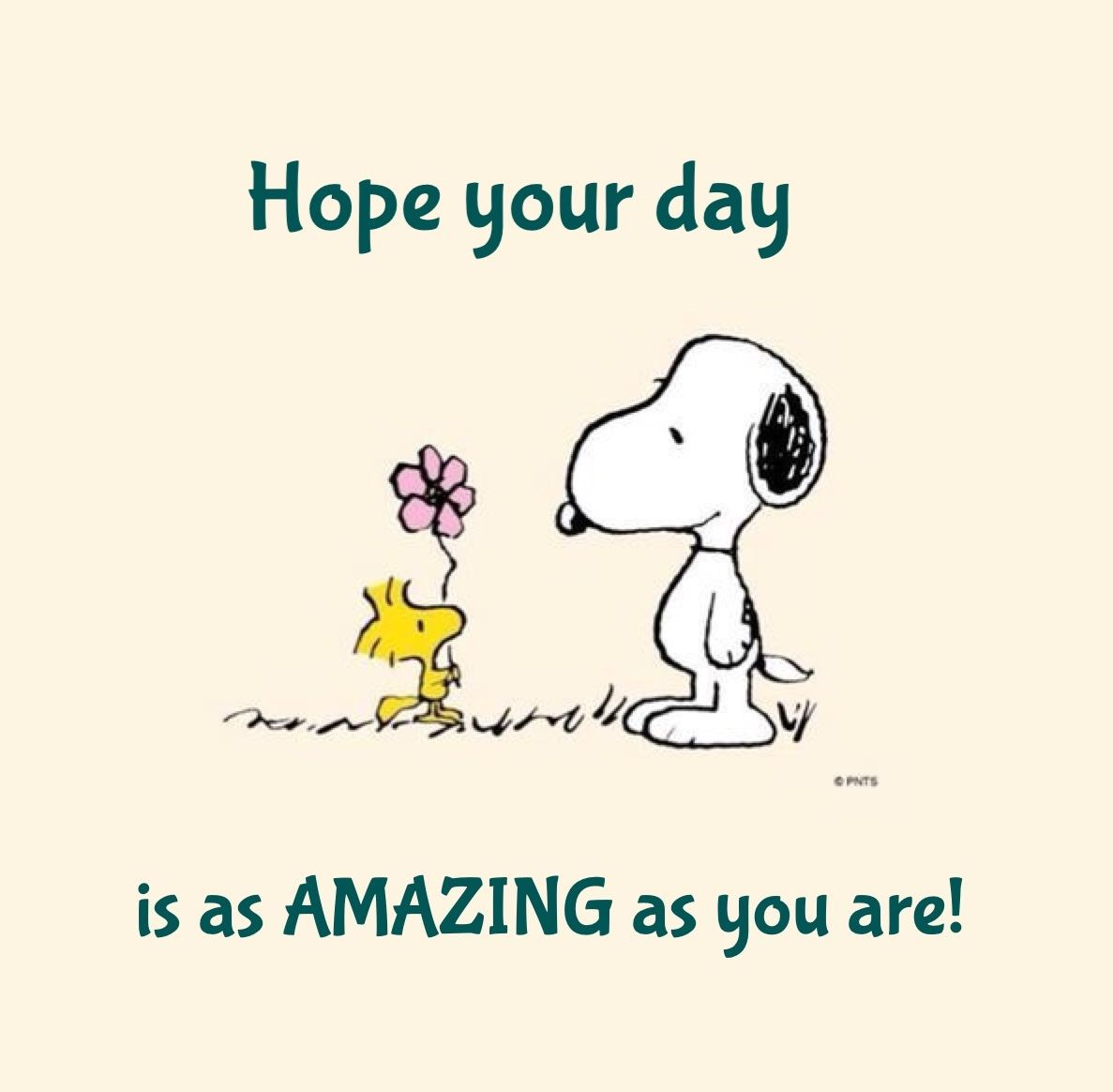 Snoopy Hope Your Day Is As Amazing As You Are Quotes