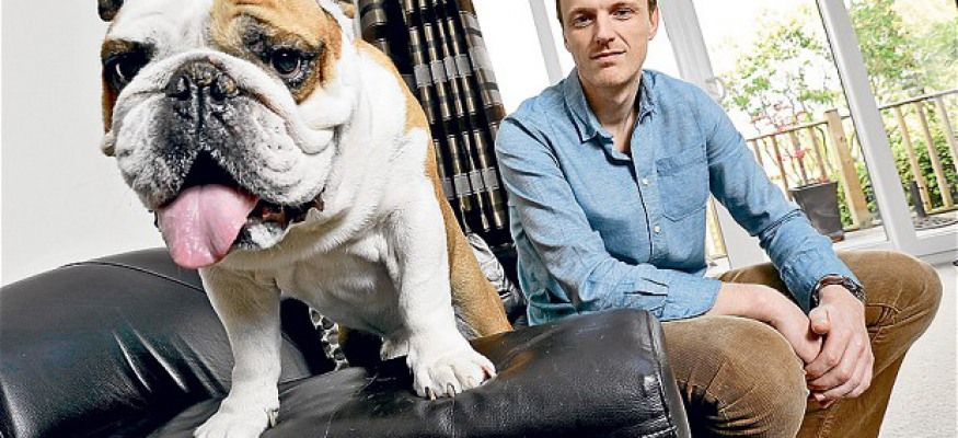Home Pet insurance dogs, Dog insurance, Cheap pet insurance