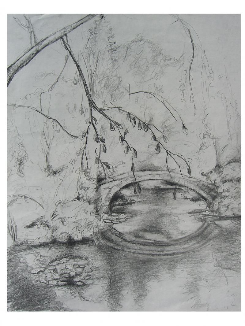 Pond drawing pencil google search pond drawing pencil drawings garden art graphite