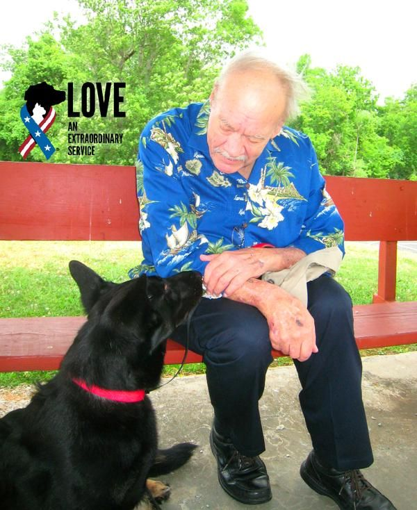 Such a touching story! Dog with disabilities gets adopted by a veteran coping with his own disabilities.