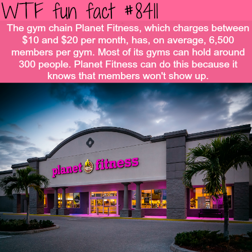 Planet Fitness Wtf Fun Facts With Images Fun Facts Wtf Fun